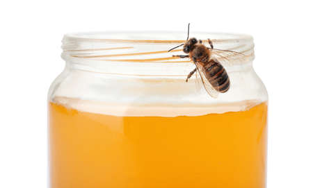 Jar with honey and bee on white background