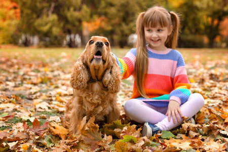 Cute little girl with her pet in park. Autumn walk Imagens