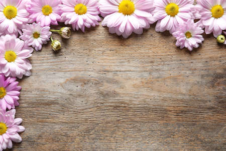 Beautiful chamomile flowers on wooden background, flat lay with space for text