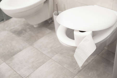 Toilet bowl with paper roll in bathroom. Space for text Stock Photo