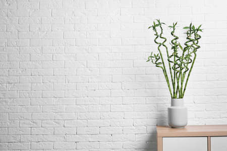 Vase with green bamboo on table against brick wall. Space for text