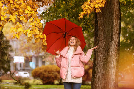 Woman with umbrella in autumn park on rainy day Banque d'images