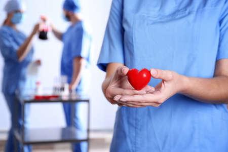 Doctor sosteniendo corazón rojo en el hospital, primer plano. Dia de la donacion