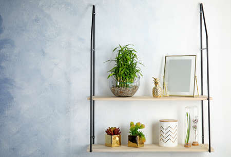 Shelves with green lucky bamboo in glass bowl and decor on light wall. Space for text
