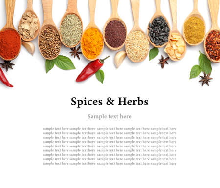 Set of different spices and herbs with space for text on white background, top view Imagens
