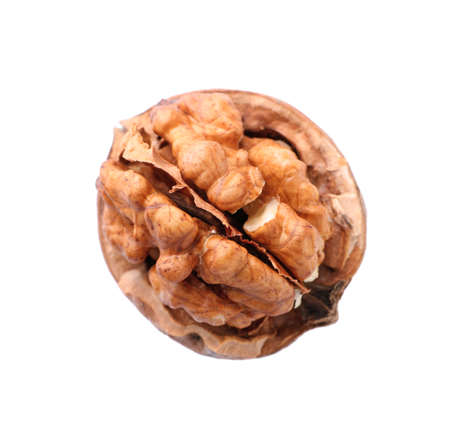 Walnut in shell on white background, top view. Organic snack