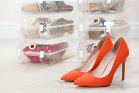 Pair of female shoes and other footwear in plastic boxes on floor. Storage organization