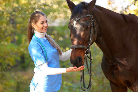 Veterinarian in uniform with beautiful brown horse outdoors Фото со стока - 114844650