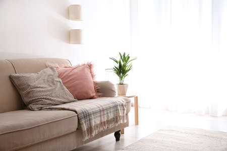 Modern living room interior with comfortable sofa. Space for text