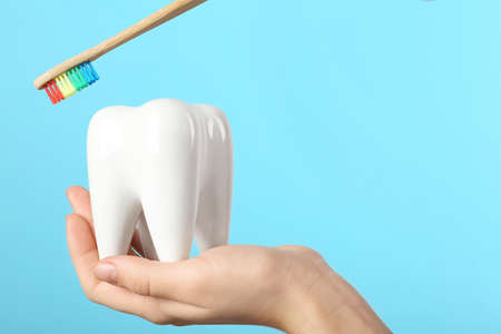 Dentist holding ceramic model of tooth and wooden brush on color background, space for text