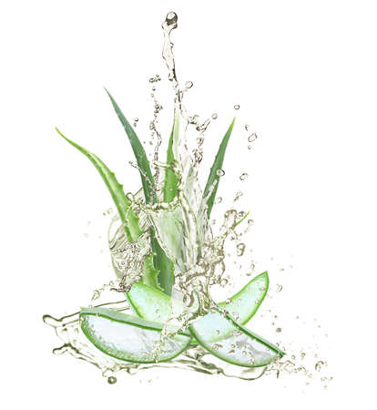 Leaves and slices of aloe with fresh water on white background