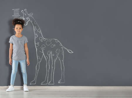 African-American child measuring height near chalk giraffe drawing on grey wall. Space for text