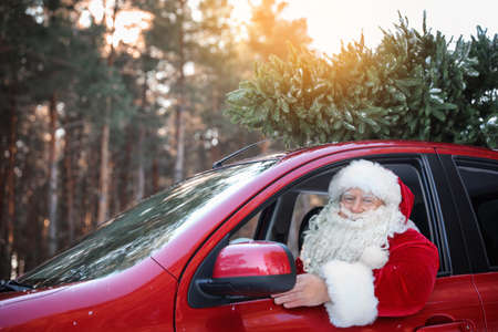 Authentic Santa Claus driving car with Christmas tree, view from outside