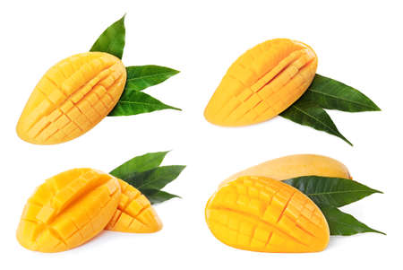 Cut tropical ripe mangoes with leaves on white background