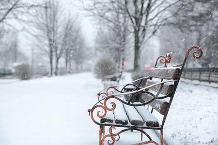 Ławka pokryta świeżym śniegiem w dzień burzy w parku miejskim. Miejsce na tekst