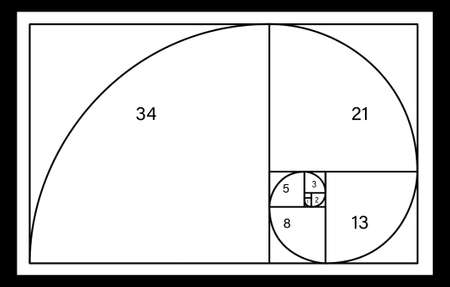Fibonacci spiral with numbers on white background. Golden ratio concept