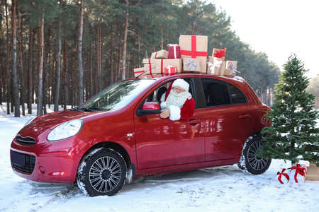 Authentic Santa Claus in red car with gift boxes near Christmas tree, outdoors