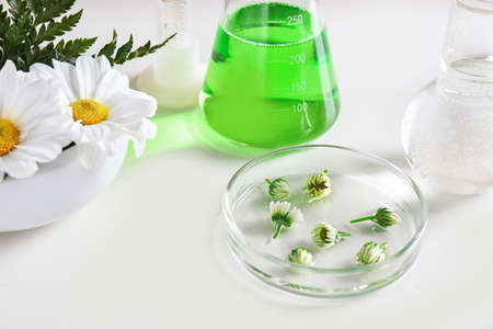 Ingredients and laboratory glassware on white background. Dermatology research
