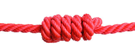 Red rope with knot on white background 免版税图像