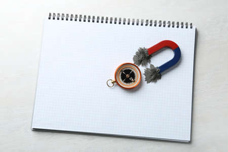 Notebook, compass and magnet with iron powder on light background, top view. Space for text
