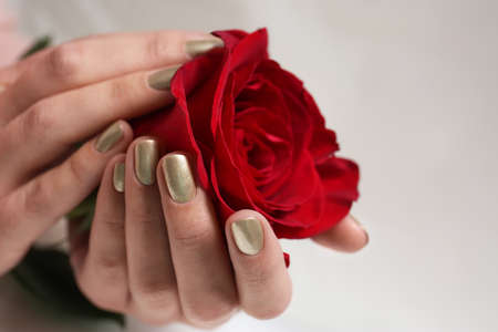 Woman with gold manicure holding rose on blurred background, closeup. Nail polish trends