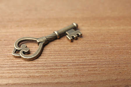 Old vintage key on wooden background, space for text