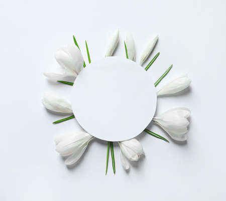 Beautiful spring crocus flowers and card on white background, top view. Space for text Standard-Bild