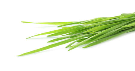 Green organic wheat grass on white background