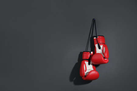 Pair of boxing gloves on grey background, space for text Stock fotó