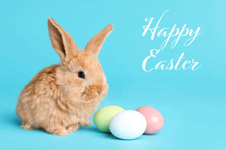 Adorable furry bunny near dyed eggs and text Happy Easter on color background