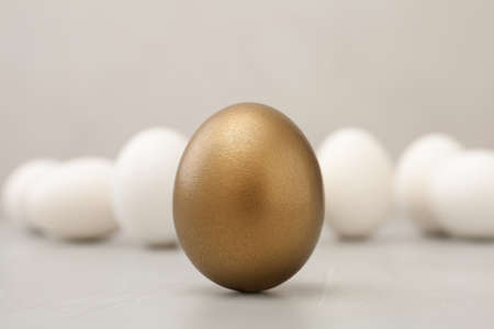 One golden egg on light background, closeup