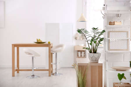 Modern eco style kitchen interior with wooden crates, houseplant and table Archivio Fotografico