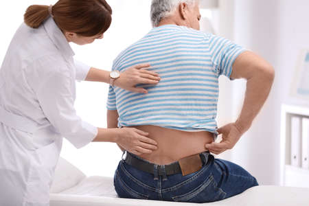Chiropractor examining patient with back pain in clinic Banque d'images