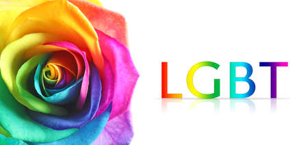 Beautiful rainbow rose flower and text LGBT on white background, closeup. Gay community