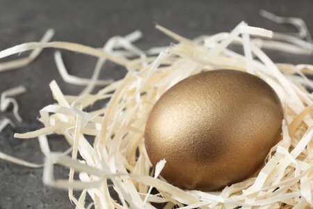Golden egg in nest on grey background, closeup