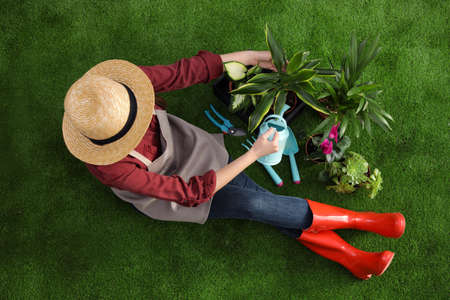 Woman taking care of plant on green grass, top view. Home gardening