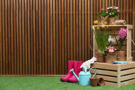 Composition with different gardening tools on artificial grass at wooden wall. Space for text Stockfoto
