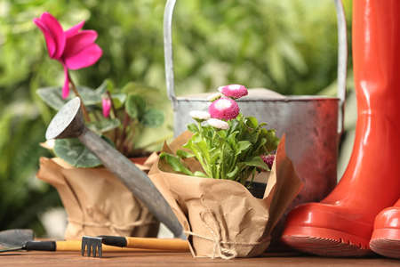 Blooming flowers and gardening equipment on table outdoors