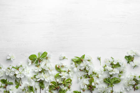 Flat lay composition of beautiful fresh spring flowers on wooden background, space for text 版權商用圖片