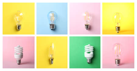 Collage of different lamp bulbs on color background