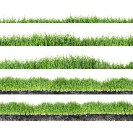 Zestaw świeżej zielonej trawy na białym tle