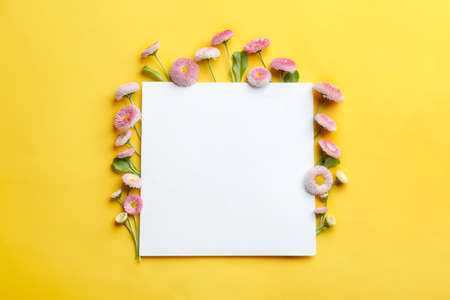 Flat lay composition with spring daisy flowers and card on color background. Space for text Reklamní fotografie