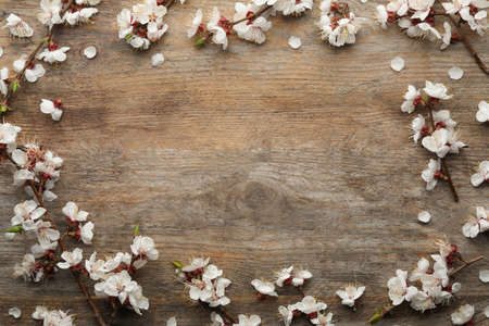 Frame made of beautiful fresh spring flowers on wooden table, top view with space for text
