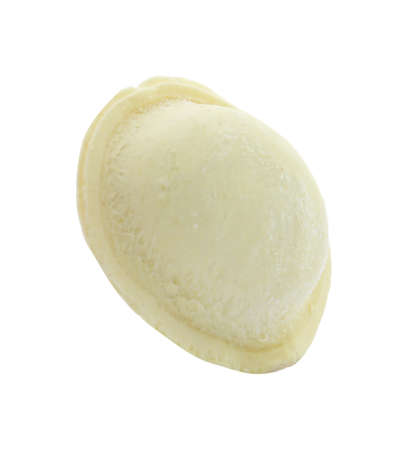 Raw dumpling with tasty filling on white background