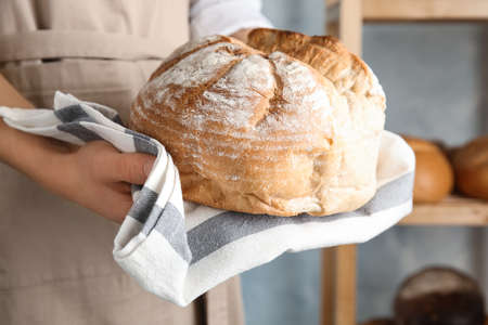 Baker holding loaf of bread indoors, closeup