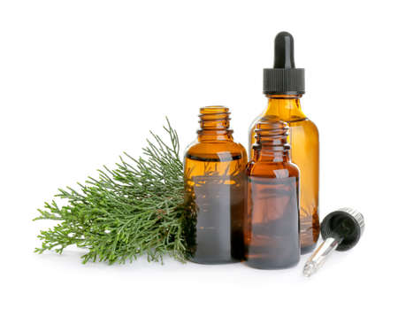 Different little bottles with essential oils and pine branches on white background