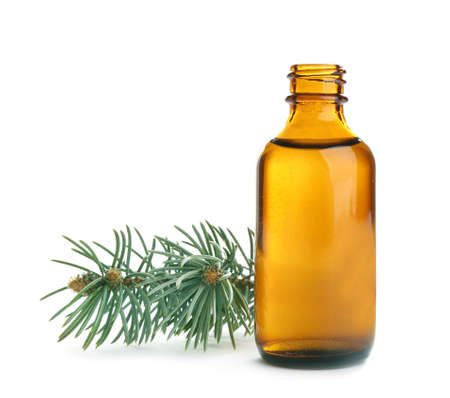 Little open bottle with essential oil and pine branch on white background Archivio Fotografico