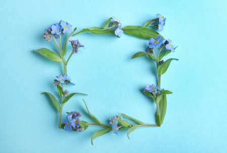 Frame made of amazing forget-me-not flowers on color background, flat lay. Space for text