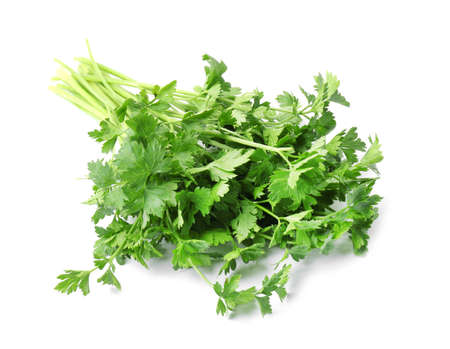 Bunch of fresh green parsley on white background