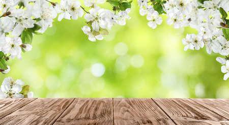 Tavolo in legno e rami di alberi con piccoli fiori su sfondo sfocato, spazio per il testo. Incredibile fioritura primaverile